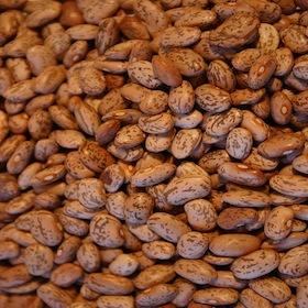 800px-Beans-082304-01
