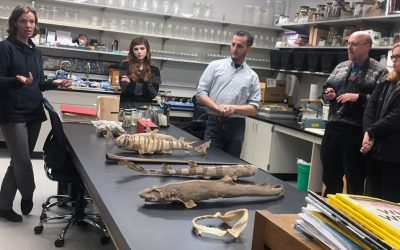 Tour the Burke Museum Fish Collection
