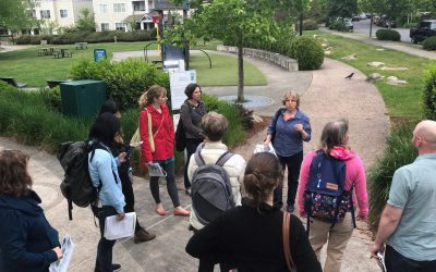 When Salmon and Stormwater Pollution Collide: Tour the Green Solutions