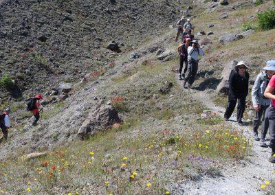 nswa-1908-volcano-geology-walking-up