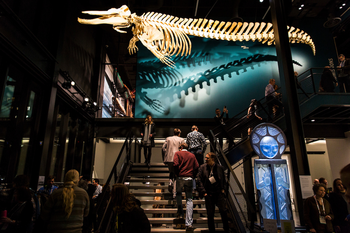 Northwest Science Writers Association Night Out at the Museum Press Party