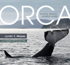 photo of book cover, showing orca emerging from water